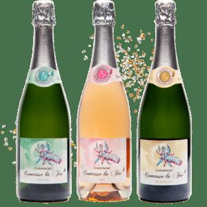 3 bouteilles de champagne comtesse la fée tradition, rosé et millésime 2009 avec des paillettes en fond